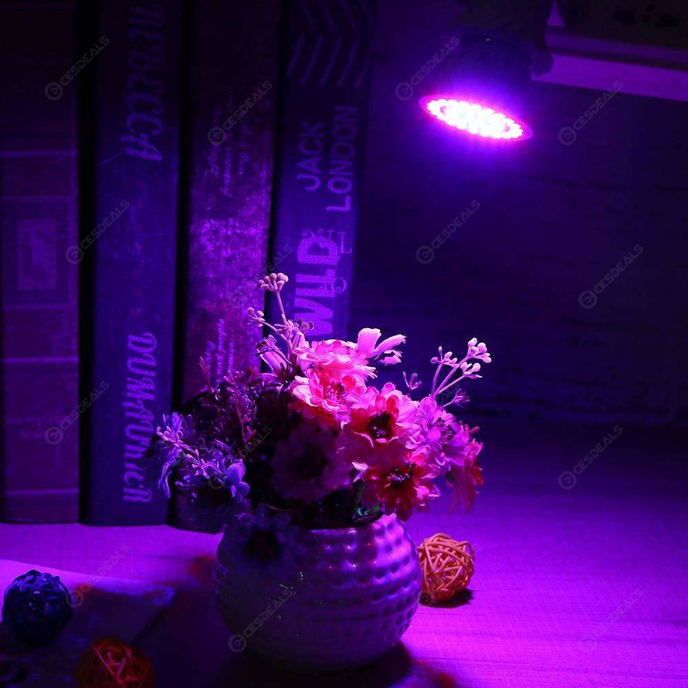 220V E27 2835 SMD Red+Blue LED Grow Light Bulb Indoor Plant Growth Lamp