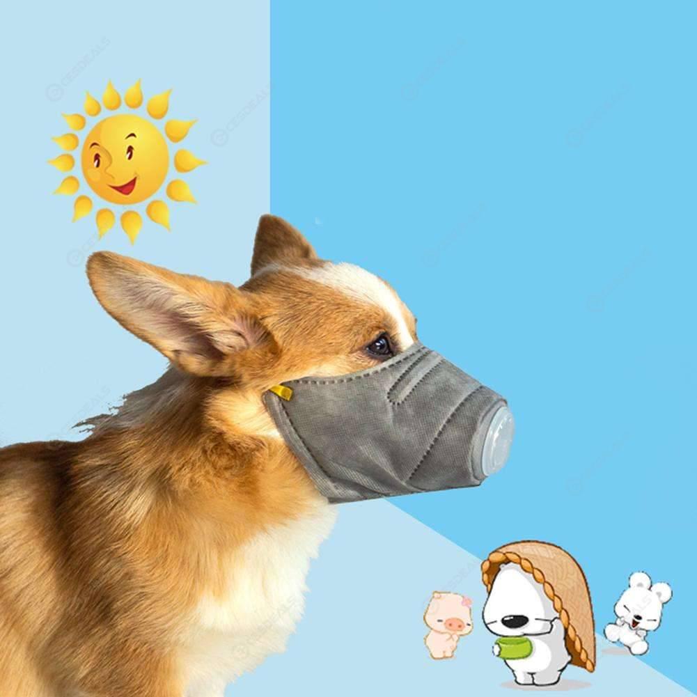 masque anti pollution chien