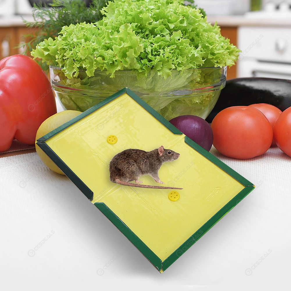 Sticky Mice Traps Mouse Glue Boards Rat Glue Pad Mouse Catcher (12x17cm)