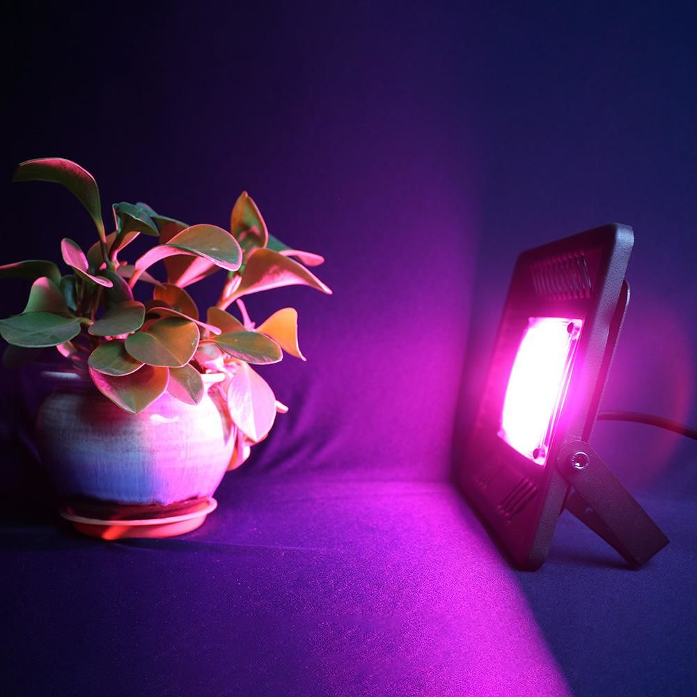 LED Flood Light Waterproof Grow Lamp for Plant Indoor Hydroponic (50W)