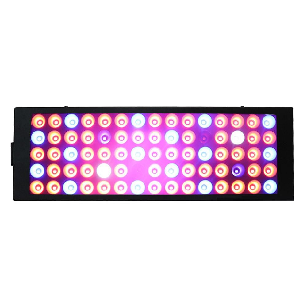 LED Grow Light 40W Full Spectrum Indoor Plants Seedling Growing Lamp (US)
