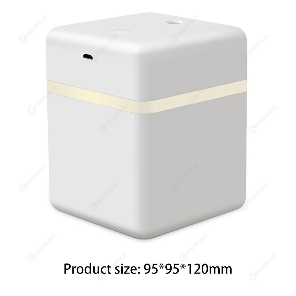 600ml Portable Atomizing Humidifier Air Purifier Sprayer (White Induction)