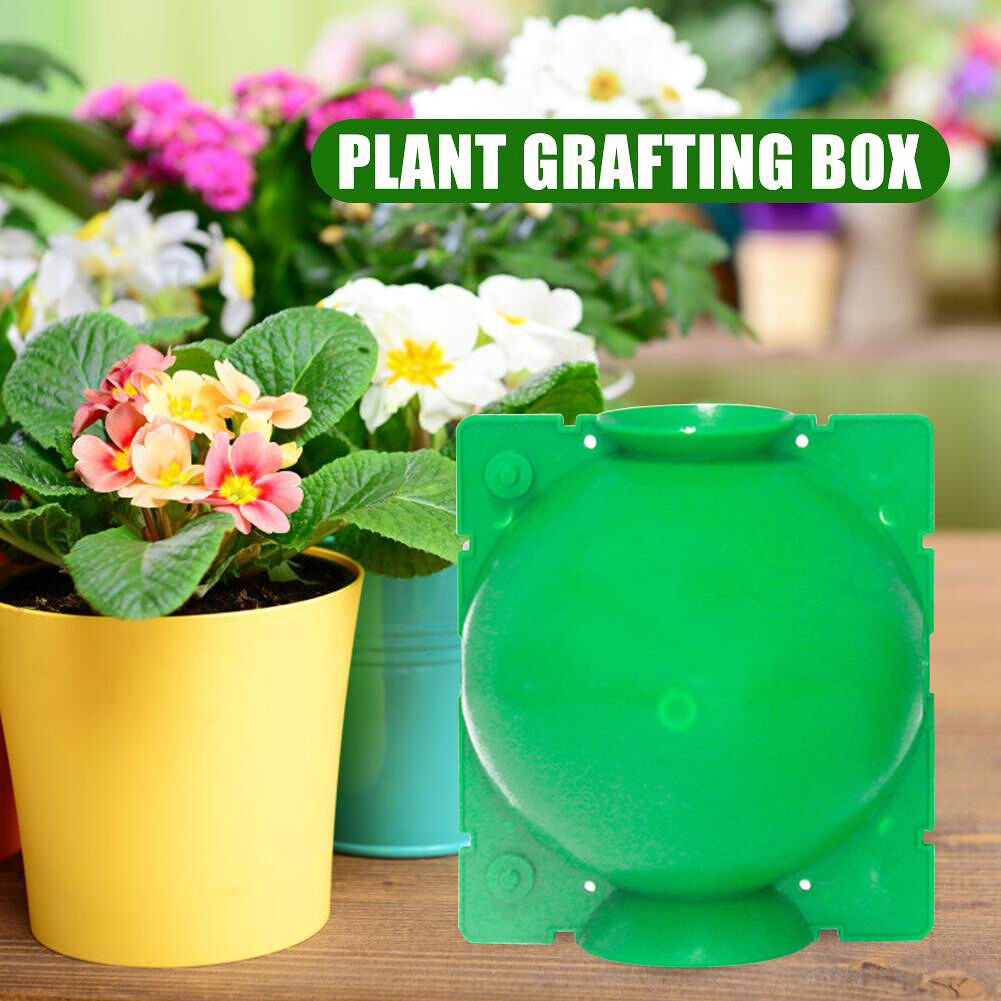 Plant Rooting Box Plant Growing Reproduction Case Grafting Holder Ball (L)